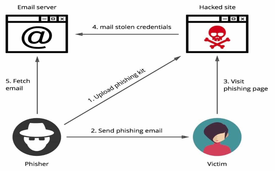 The phishing cycle