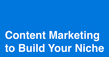 Niche content building tactics