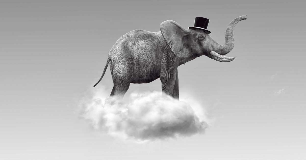 elephant-on-a-cloud