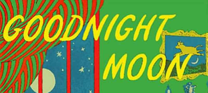 goodnight moon cover