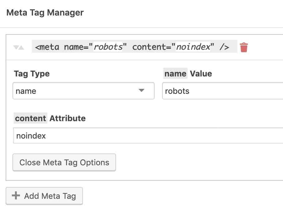meta-tag-options