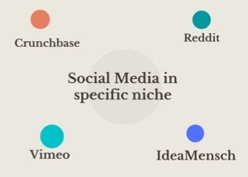 niche social media